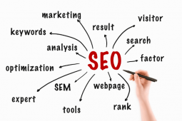 What are the ranking factors in SEO?