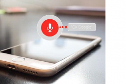Why Is Voice Search Optimization Important?